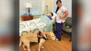 ECPI University Nursing Student gets a Paw Up From Service Dog